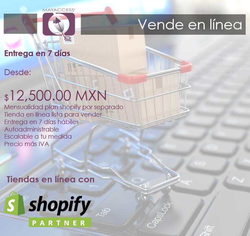 Tienda en línea completa a un precio inmejorable
